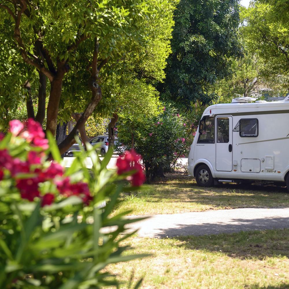 Camping Zeus